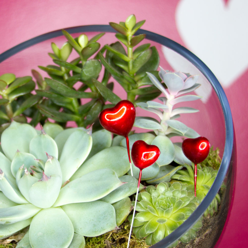 Free Wire-Stemmed Red Enamel Hearts with Each Valentine's Terrarium