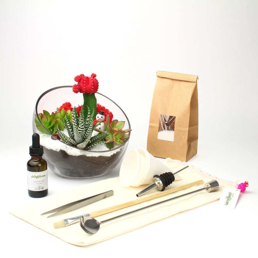 The Egg DIY Terrarium Kit Holiday Bundle